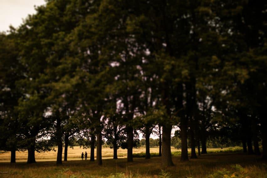 couple woodland