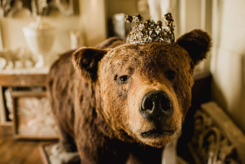 Aynhoe Park bear