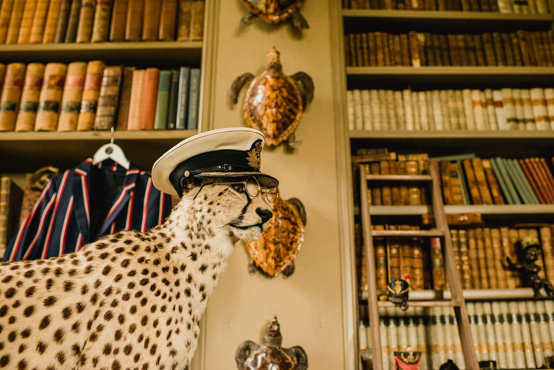 Aynhoe Park leopard