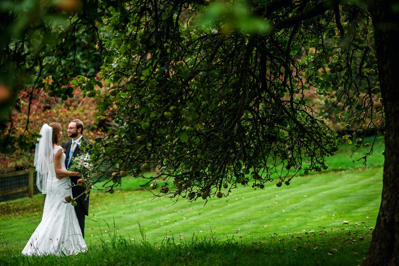 Wedding portrait under apple tree in Hampshire