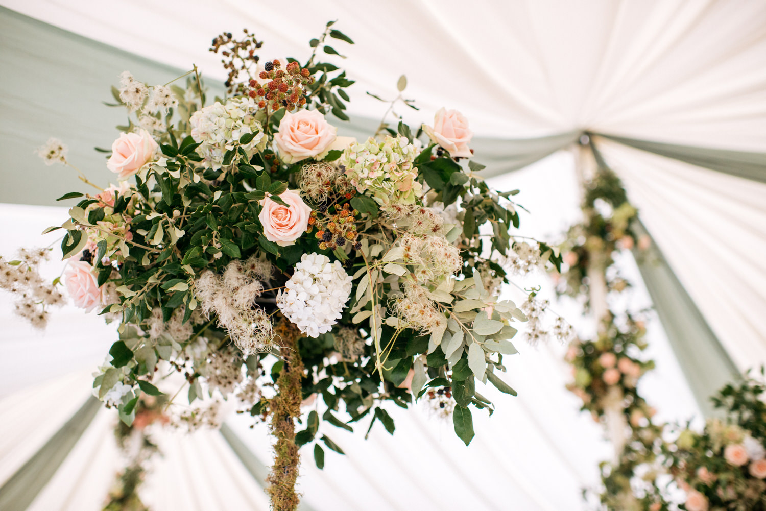 Marquee flowers